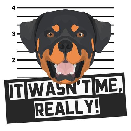 Illustration Mugshot Rottweiler - The guilty dog gets a police photo. Dog lovers and dog fans love them sassy dog.
