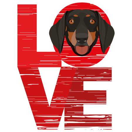 Love Dachshund - A dogs head with the word love. The dog is mans best friend and is loved as a pet.