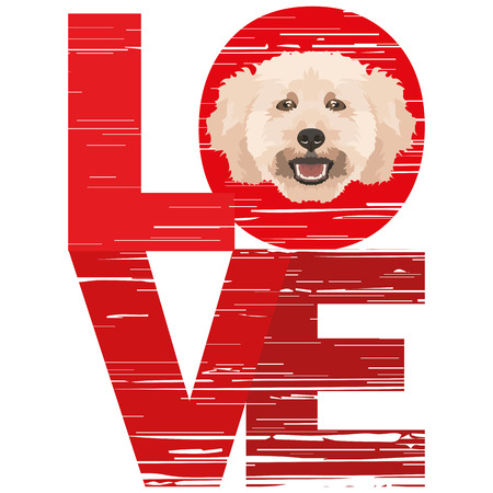 Love poodle - A dogs head with the word love. The dog is mans best friend and is loved as a pet.