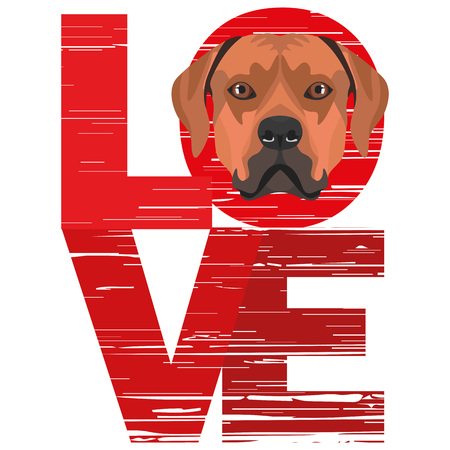 Love Rhodesian Ridgeback - A dogs head with the word love. The dog is mans best friend and is loved as a pet. Ilustração
