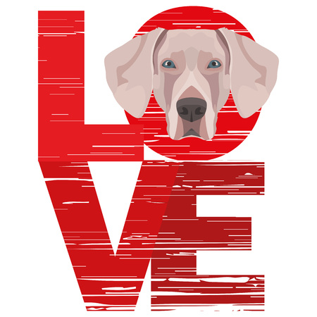 Love Weimaraner - A dog's head with the word love. The dog is man's best friend and is loved as a pet.