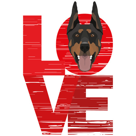 Love Doberman - A dogs head with the word love. The dog is mans best friend and is loved as a pet.