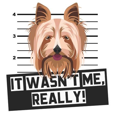 Illustration Mugshot Yorkshire Terrier - The guilty dog gets a police photo. Dog lovers and dog fans love them sassy dog. Ilustração