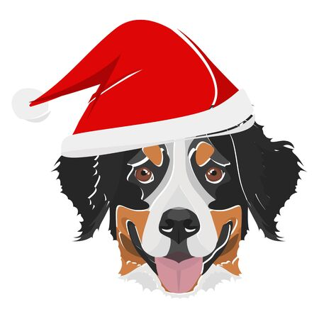 Bernese Mountain Dog with Santa Hat - This cheerful dog is properly contemplative through his Santa hat. A Christmas motive for dog owners. Illusztráció