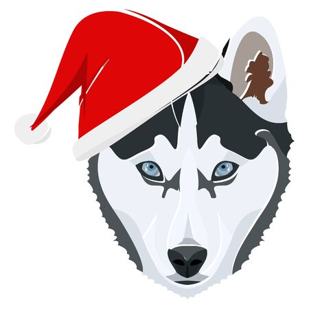 Husky with Santa Hat - This cheerful dog is properly contemplative through his Santa hat. A Christmas motive for dog owners.  Illusztráció
