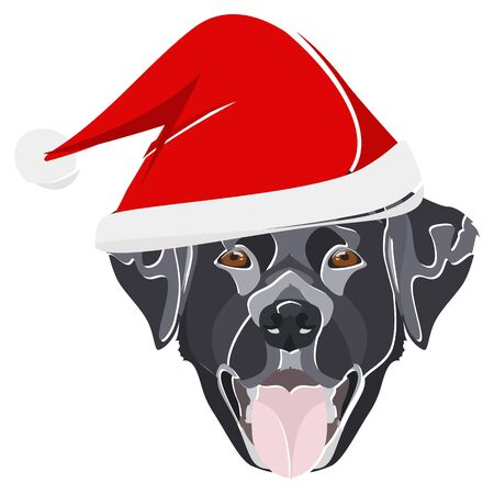 Labrador with Santa Hat - This cheerful dog is properly contemplative through his Santa hat. A Christmas motive for dog owners. Illusztráció