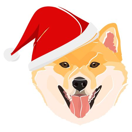 Shiba Inu with Santa Hat - This cheerful dog is properly contemplative through his Santa hat. A Christmas motive for dog owners.