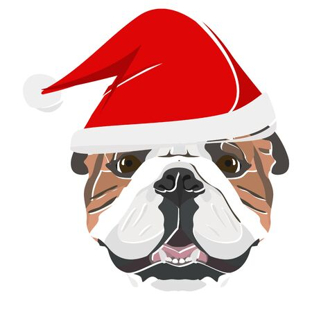 English Bulldog with Santa Hat - This cheerful dog is properly contemplative through his Santa hat. A Christmas motive for dog owners. Ilustrace