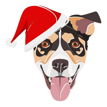 Jack Russell Terrier with Santa Hat - This cheerful dog is properly contemplative through his Santa hat. A Christmas motive for dog owners.