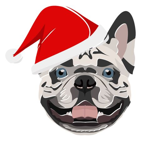French Bulldog with Santa Hat - This cheerful dog is properly contemplative through his Santa hat. A Christmas motive for dog owners.