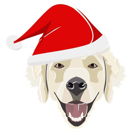 Golden Retriever with Santa Hat - This cheerful dog is properly contemplative through his Santa hat. A Christmas motive for dog owners.