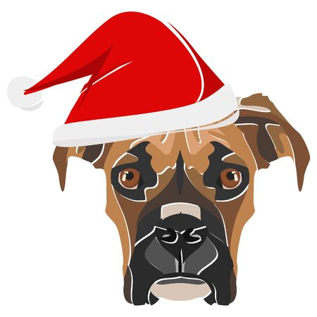 Boxer with Santa Hat - This cheerful dog is properly contemplative through his Santa hat. A Christmas motive for dog owners.