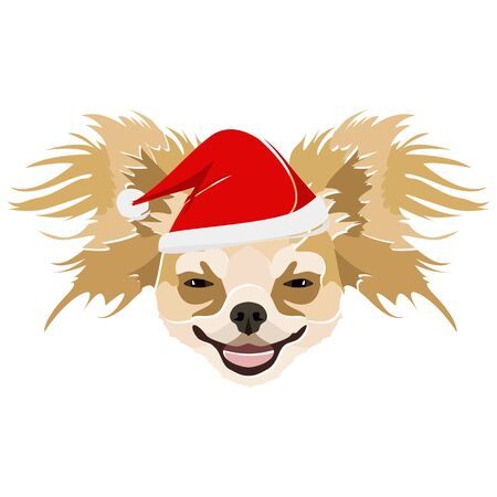 Chihuahua with Santa hat - This cheerful dog is properly contemplative through his Santa hat. A Christmas motive for dog owners.