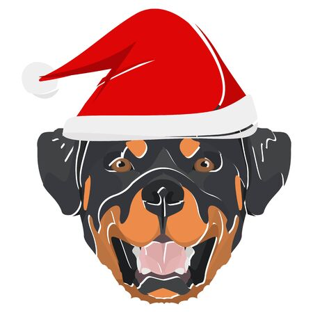 Rottweiler with Santa Hat - This cheerful dog is properly contemplative through his Santa hat. A Christmas motive for dog owners.