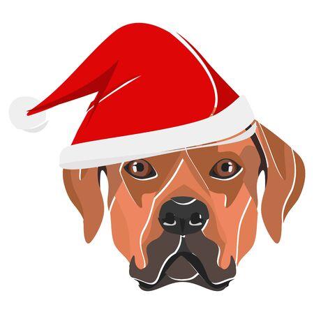 Rhodesian Ridgeback with Santa Hat - This cheerful dog is properly contemplative through his Santa hat. A Christmas motive for dog owners. Illusztráció