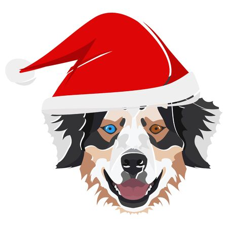 Australian Shepherd with Santa Hat - This cheerful dog is properly contemplative through his Santa hat. A Christmas motive for dog owners. Illusztráció