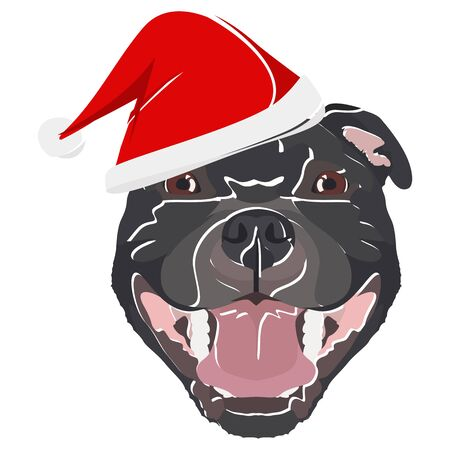 Staffordshire Bull Terrier with Santa Hat - This cheerful dog is properly contemplative through his Santa hat. A Christmas motive for dog owners.
