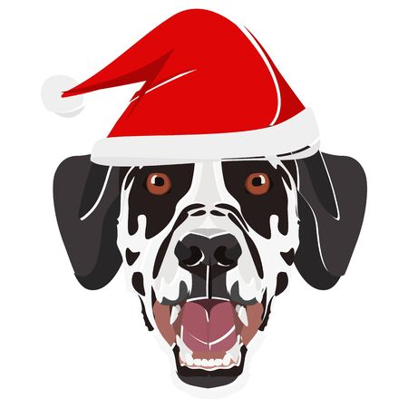 Dalmatian with Santa Hat - This cheerful dog is properly contemplative through his Santa hat. A Christmas motive for dog owners.