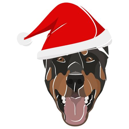 Doberman with Santa Hat - This cheerful dog is properly contemplative through his Santa hat. A Christmas motive for dog owners.
