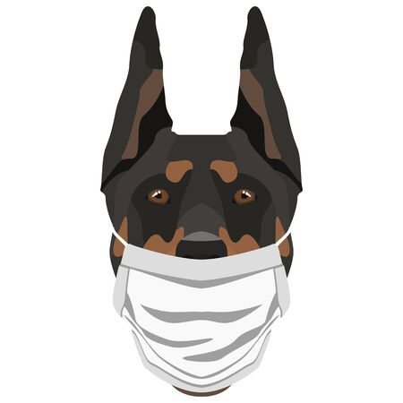 Illustration of a doberman with a respirator. At this time of the pandemic, the design is a nice graphic for fans of dogs. Archivio Fotografico - 145746747