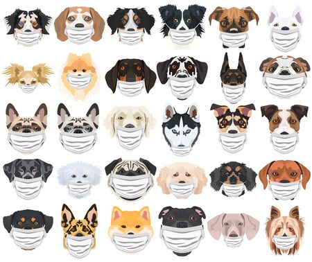 Illustration and set of dogs with respirator. At this time of the pandemic, the design is a nice graphic for fans of dogs.