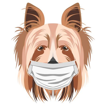 Illustration of a Yorkshire Terrier with a respirator. At this time of the pandemic, the design is a nice graphic for fans of dogs. Archivio Fotografico - 145746749