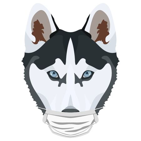 Illustration of a husky with a respirator. At this time of the pandemic, the design is a nice graphic for fans of dogs. Vettoriali