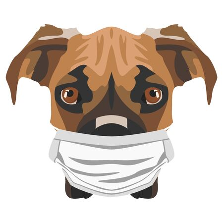 Illustration of a boxer with respirator. At this time of the pandemic, the design is a nice graphic for fans of dogs.