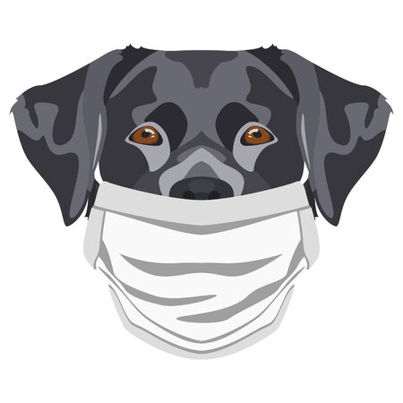 Illustration of a labrador with respirator. At this time of the pandemic, the design is a nice graphic for fans of dogs. Archivio Fotografico - 145746757