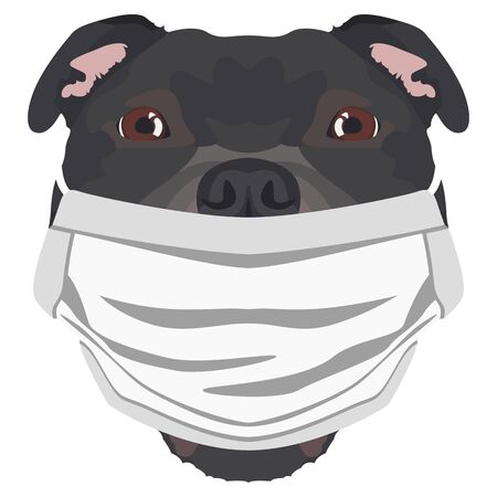 Illustration of a Staffordshire bull terrier wearing a respirator. At this time of the pandemic, the design is a nice graphic for fans of dogs. Archivio Fotografico - 145746760