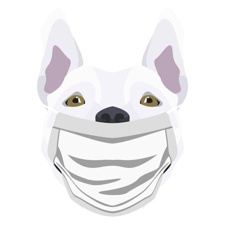 Illustration of a bull terrier wearing a respirator. At this time of the pandemic, the design is a nice graphic for fans of dogs.
