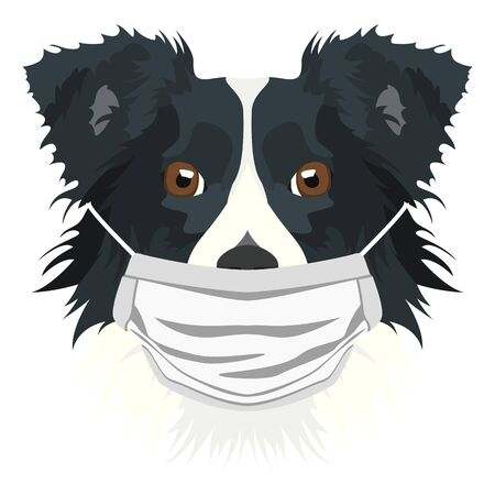 Illustration of a border collie with respirator. At this time of the pandemic, the design is a nice graphic for fans of dogs.