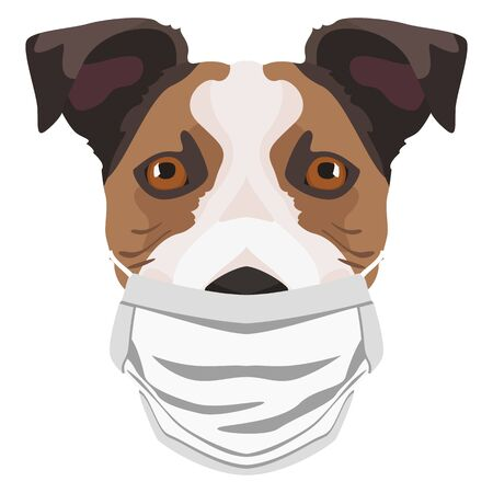 Illustration of a Jack Russel Terrier wearing a respirator. At this time of the pandemic, the design is a nice graphic for fans of dogs. Archivio Fotografico - 145746772