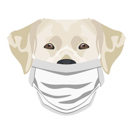 Illustration of a labrador with respirator. At this time of the pandemic, the design is a nice graphic for fans of dogs. Archivio Fotografico - 145746773
