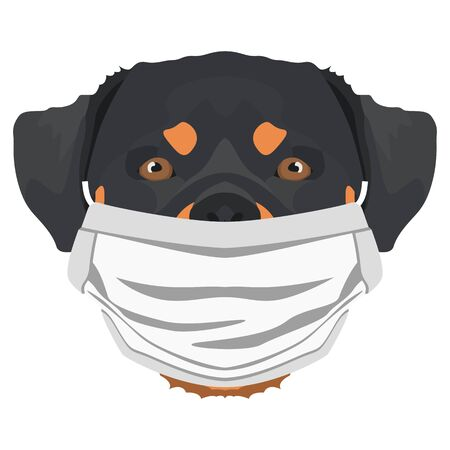 Illustration of a Rottweiler with a respirator. At this time of the pandemic, the design is a nice graphic for fans of dogs.
