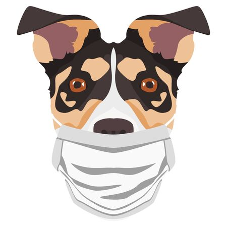 Illustration of a Jack Russel Terrier wearing a respirator. At this time of the pandemic, the design is a nice graphic for fans of dogs. Vettoriali