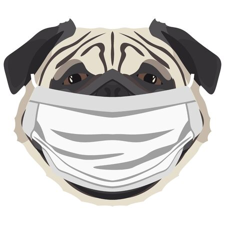 Illustration of a pug with a respirator. At this time of the pandemic, the design is a nice graphic for fans of dogs. Archivio Fotografico - 145746777