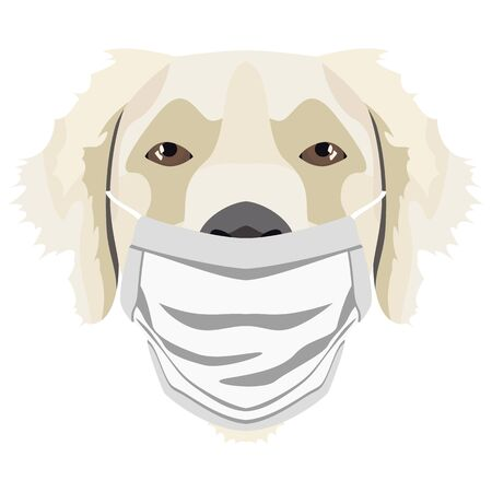 Illustration of a golden retriever with respirator. At this time of the pandemic, the design is a nice graphic for fans of dogs. Archivio Fotografico - 145746778