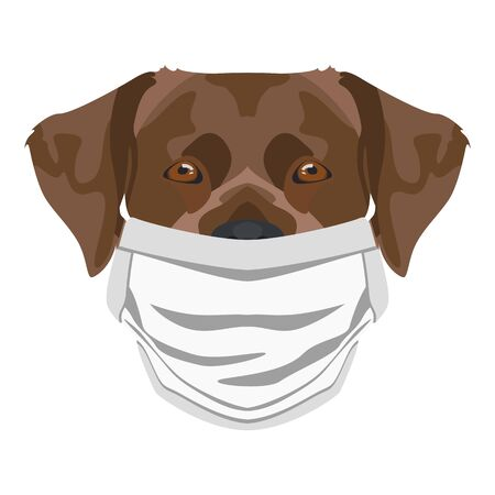 Illustration of a labrador with respirator. At this time of the pandemic, the design is a nice graphic for fans of dogs.