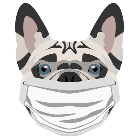 Illustration of a french bulldog wearing a respirator. At this time of the pandemic, the design is a nice graphic for fans of dogs.