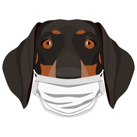 Illustration of a Dachshund with a respirator. At this time of the pandemic, the design is a nice graphic for fans of dogs.