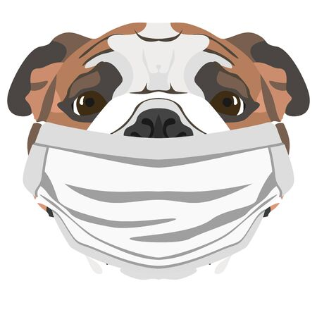 Illustration of an english bulldog with respirator. At this time of the pandemic, the design is a nice graphic for fans of dogs. Archivio Fotografico - 145746784