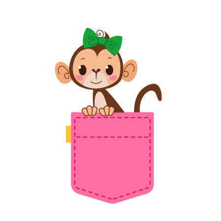 A cute pocket of pink jeans from which a monkey girl with a bow on her head peeps. Women s clothing. Template for text and themes. Vector illustration in flat cartoon style. Isolated clipart Vektorové ilustrace