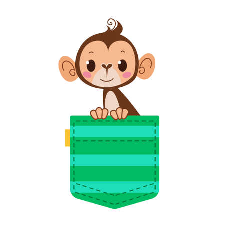 Monkey monkey in your pocket. A green striped pocket with a pet. Cartoon character. Vector illustration isolate.