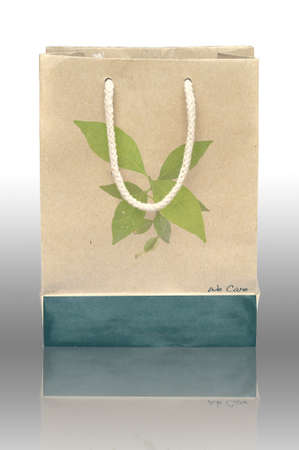 reusable: Concept picture of recycle paper bag for save environment
