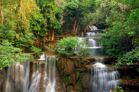 mountain stream: Waterfall in deep forest
