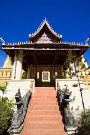 banian tree: Lao temple