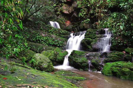 Waterfall in deep forest Stock Photo - 11231343
