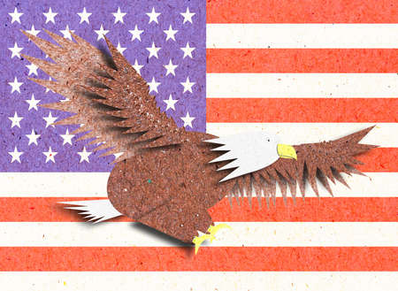 Eagle recycle paper craft with America flag for background