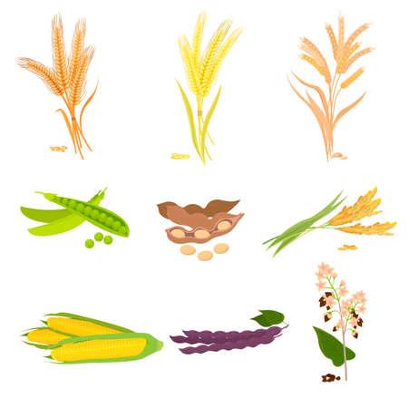 Gospodarstwo rolne ze świeżą, zdrową, smaczną żywnością organiczną. Ilustracja wektorowa